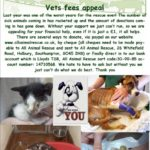 vets fees appeal3
