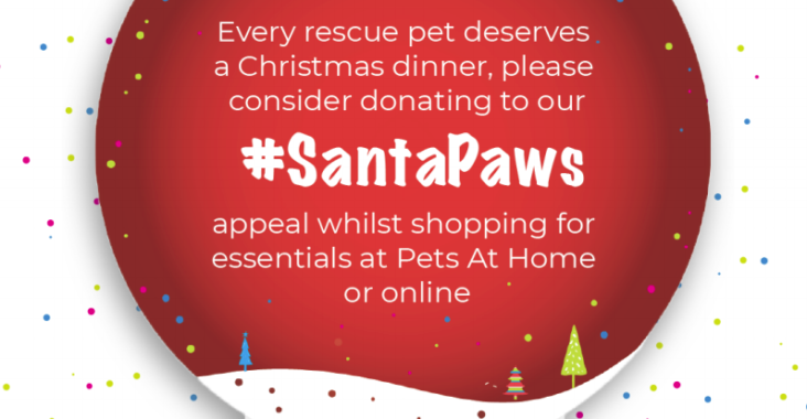 An illustration of a snow globe with Santa Paws hashtag in white on a red background