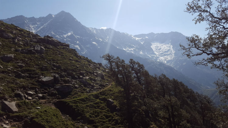 Trekking in the Himalayas at 3,000 meters in elevation.