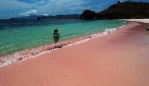 namo pink beach