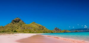 the pink beach