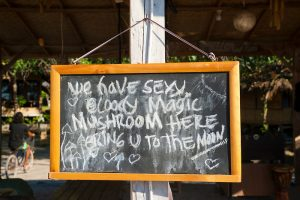 Magic Mushrooms Here, Gili Trawangan, Indonesia
