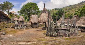 Tado Ecotourism Village