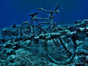 cycle in gili