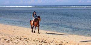 horsing in Gili