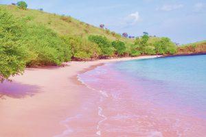pink beach komodo island