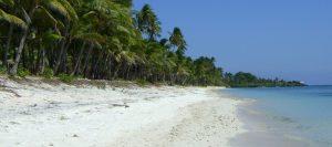 souku beach wakatobi island