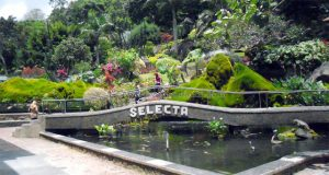 Selecta recreation park