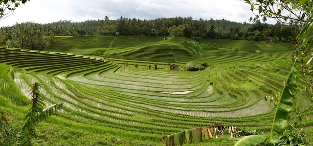 14 Things To Do In Singaraja Bali Indonesia Lovely