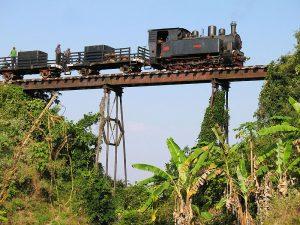 cepu-forest-railway-blora