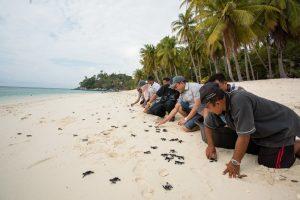 pahat-island-riau-islands