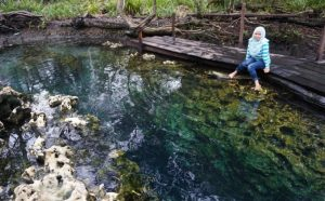 tanjung-hutan-hot-spring-riau-islands