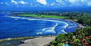 pulukan Bali1
