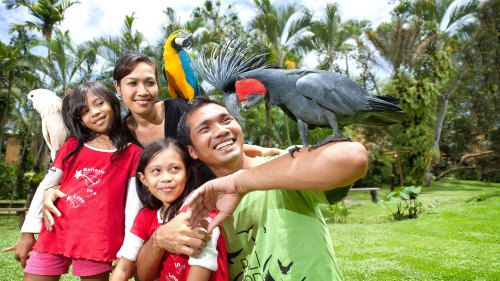 10 Delightful Things to do in Bali On Christmas Day - AllIndonesiaTourism.com