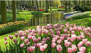 Taman Bunga Nusantara 1