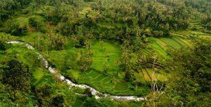 telaga waja river