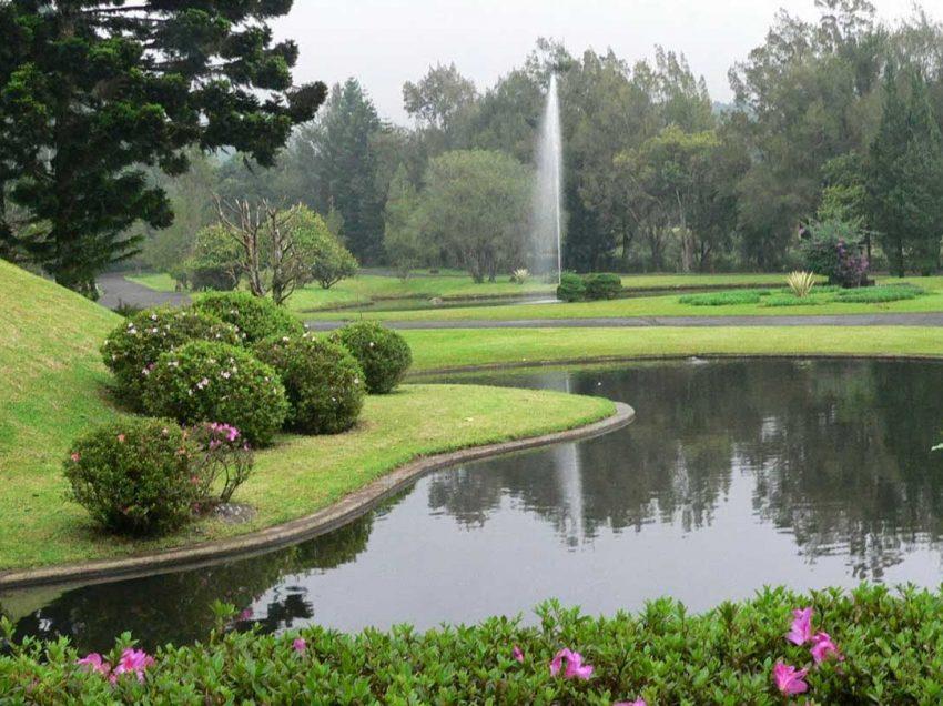 15 Things to Do in Cibodas Botanical Garden Bogor