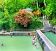What Are The Things to Do Near Banjar Hot Spring? Find The Spectacular Ones Here!