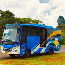 Types of Public Transportation in Bali: Cheap, Safe and Comfy
