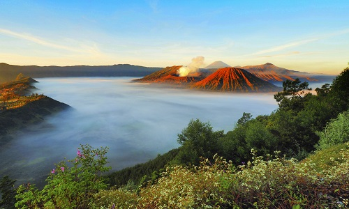 How to Get to Mount Bromo from Yogyakarta : The 3 Ways to Go
