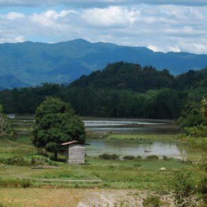 Kayan Mentarang National Park Biodiversity