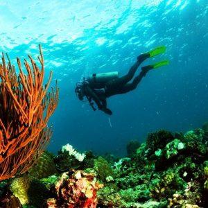 Diving in Taka Bonerate Water