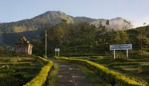 Mount Ungaran