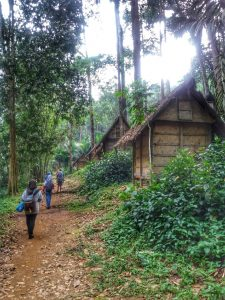 Going Back from Baduy Tribe