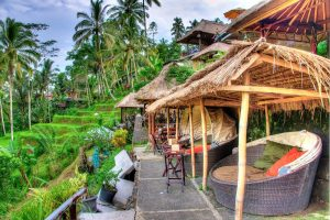Cafes in Tegalalang Rice Terrace
