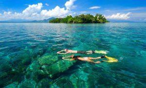 Underwater activity in Lembeh Island