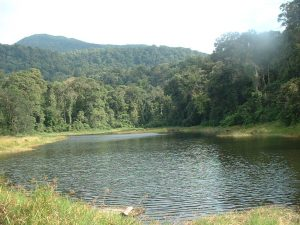 Btang Gadis National Park