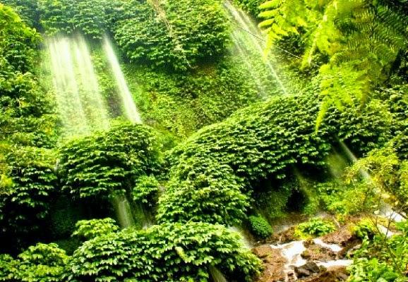 Air Terjun Lagawuna