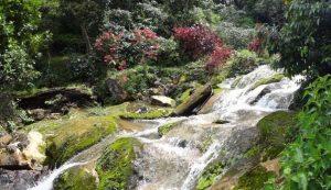 Mengaya Waterfall