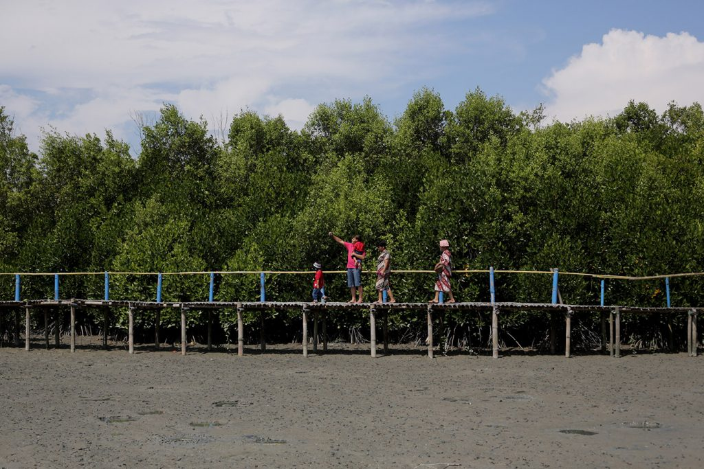Mangrove Kampoeng Nipah