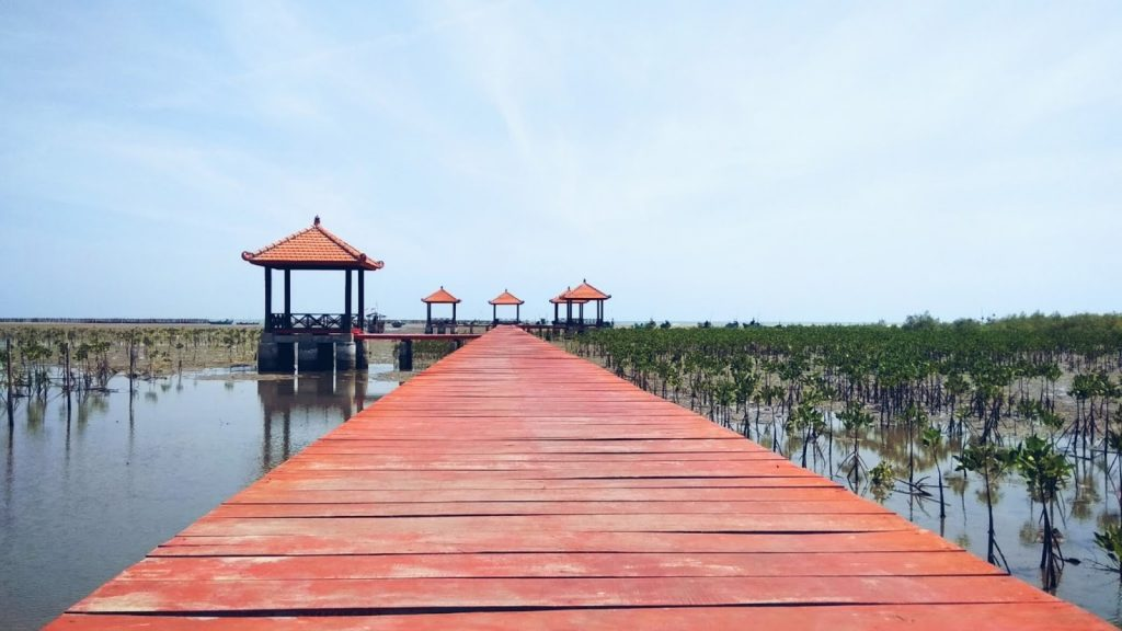 Mangrove Rembang