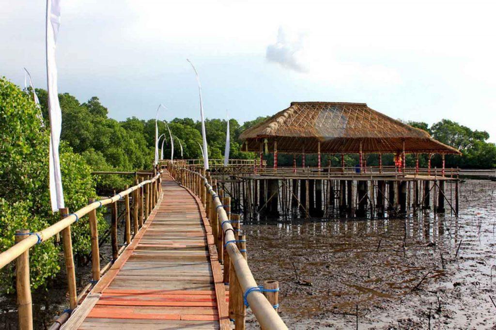 Mangrove Wanasari Bali