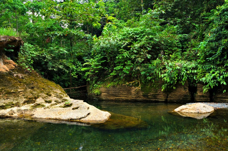 The clean Landak River in Bukit lawang