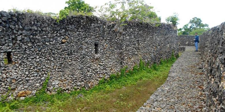 Baadia Fortress
