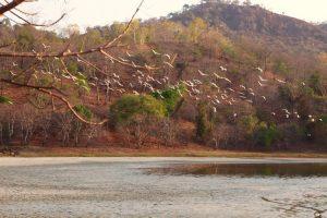 Susuk Lake