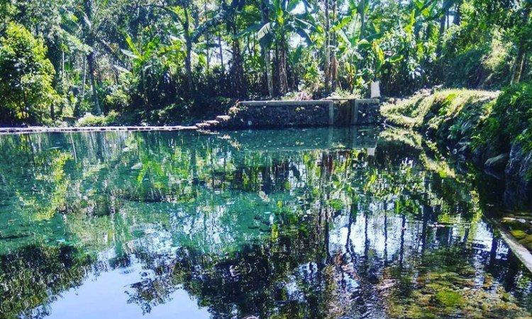 Moga Water Spring