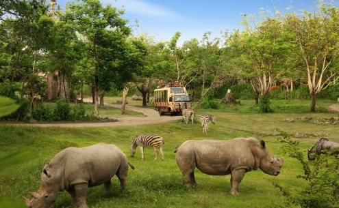 educational touris spot in bali