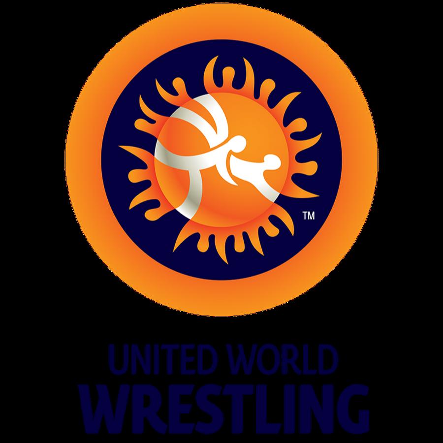 2014 Wrestling Golden Grand Prix - Final