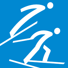 2018 Winter Olympic Games - Team relay