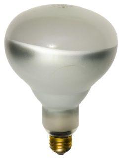 Shat-R-Shield, Inc. 01729 (125BR40/1SOFT GLASS120V PK X 6) SHAT-R-SHIELD 01729 (125BR40/1SOFT GLASS120V PK X 6)