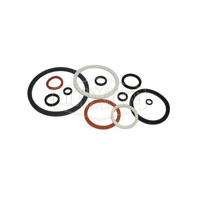 Dixon® 200-G-VI Cam and Groove Gasket, 2 in, FKM