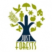 Just Forests avatar