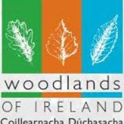 Woodlands of Ireland Project avatar