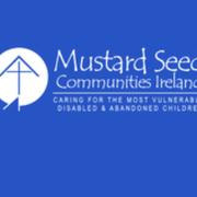 Alice Bergin's Marathon for Mustard seed avatar