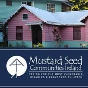Dean Tierney's marathon for Mustard Seed avatar