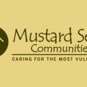 Fundraising for mustard seed avatar